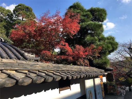 f:id:botchikurashiki:20171121143159j:image