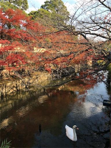 f:id:botchikurashiki:20171121143226j:image