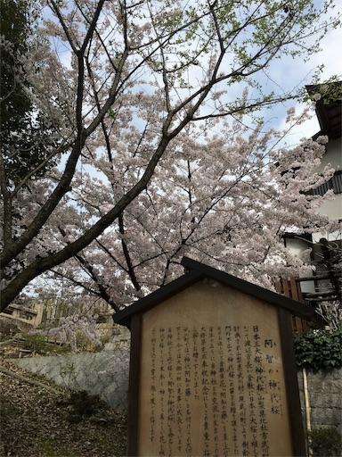f:id:botchikurashiki:20180401153139j:image