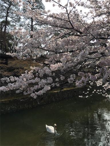 f:id:botchikurashiki:20180401170210j:image