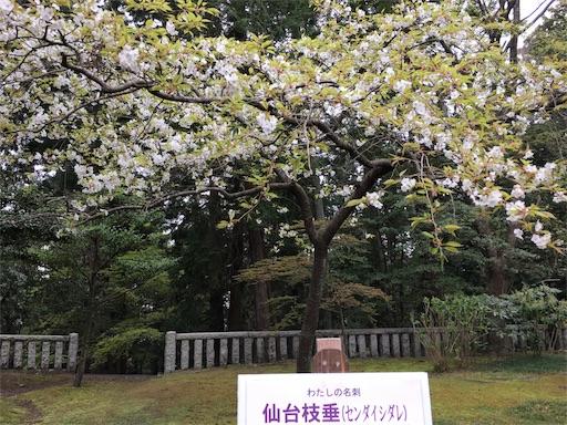 f:id:botchikurashiki:20180421191845j:image