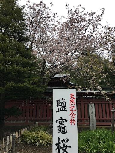 f:id:botchikurashiki:20180421192334j:image