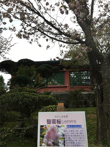 f:id:botchikurashiki:20180421232719j:image