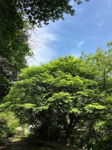 f:id:botchikurashiki:20180506022054j:image