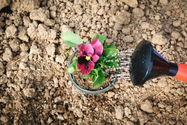 f:id:bouldering-guide:20160725135939j:plain