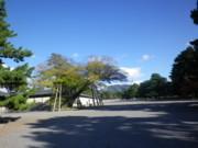 f:id:bousisensei:20111125142835j:image:right