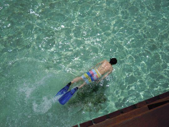 海へ潜っている写真