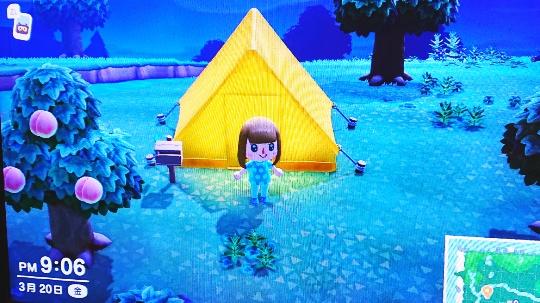 夜のキャンプシーンの画像