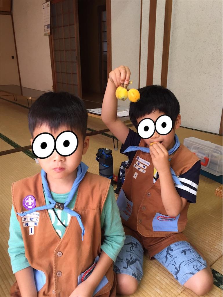 f:id:boyscoutbuzen1:20170611222658j:image