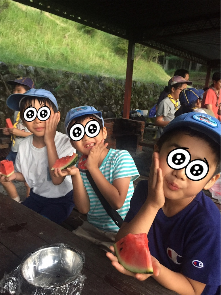 f:id:boyscoutbuzen1:20170719011000j:image