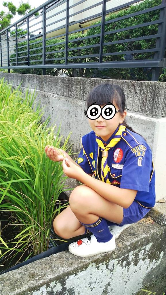 f:id:boyscoutbuzen1:20170808225804j:image