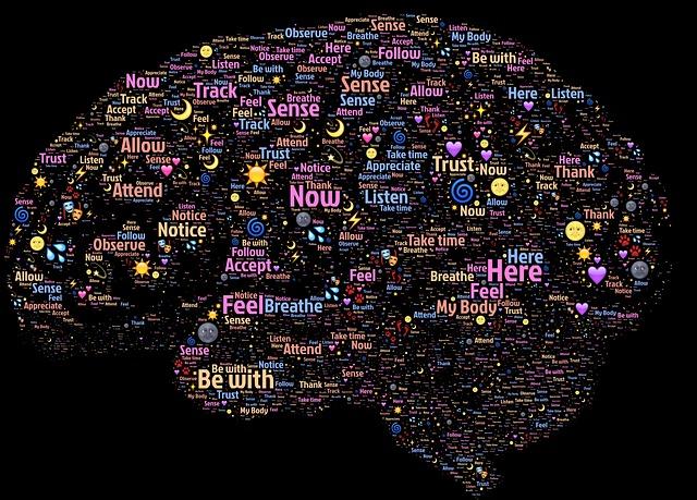 f:id:brainexpert122:20160713073127j:plain