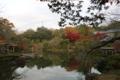 成田山公園で紅葉狩り🍁