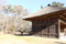 農村歌舞伎舞台の裏側の桜(舞台の背扉を開けると桜の借景という趣向)