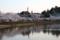 徳川家康没後400年を迎える八鶴湖の桜と八角亭(千葉県東金市)