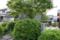 金春座発祥の地である一休寺門前(京都府京田部市)