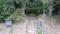 東京の墓地から分骨された岡倉天心の墓(茨城県北茨城市)