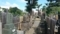 妙行寺のお岩さんの墓(奥の五輪塔、手前は田宮家の墓)