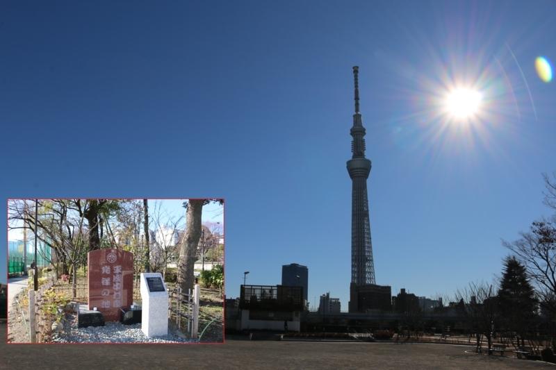 平成中村座の碑とそこから眺める東京スカイツリー