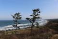 松尾芭蕉が訪れた景勝地の象潟(三崎峠からの景観)