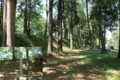 鉢形城の本丸と土塁