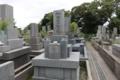 丸に橘紋/南朝方の和田(楠木)氏の末裔と思しき墓