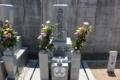 熊野神社の神門や根来寺の寺紋と同じ三つ柏