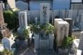 左違い鷹の羽紋(西方寺)