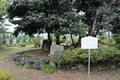 明智光秀の黒髪伝説と松尾芭蕉の歌碑(細川ガラシャはこの寺で生誕)