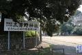 川越城城内にある三芳野神社(わらべ唄「とおりゃんせ」発祥の地)