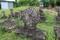 熊野本宮禰宜・和田氏の墓