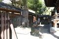 牛嶋神社の狛牛