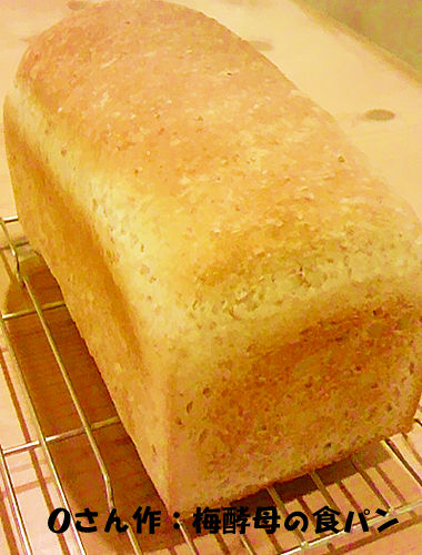 f:id:breadonbread:20160801105445j:image:w300:right