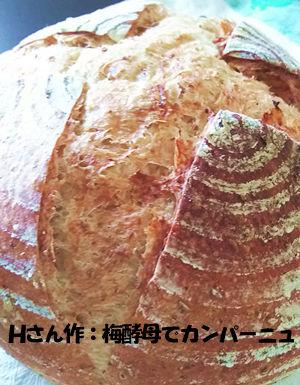 f:id:breadonbread:20160801105446j:image:w300:left