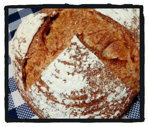 f:id:breadonbread:20170609101224j:image:w460:right