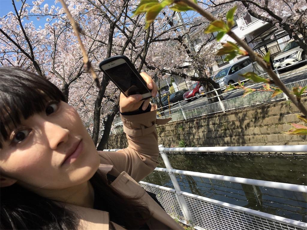 f:id:bridge-writer:20180401164646j:image