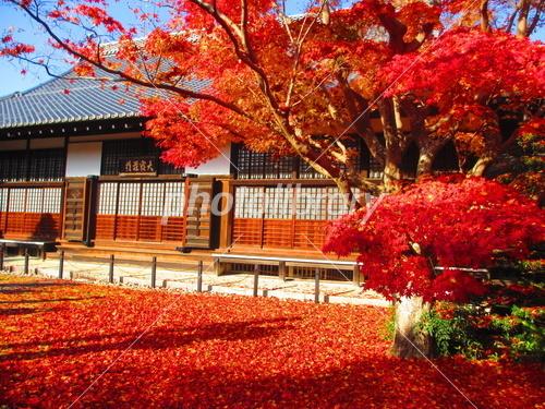 kyoto_genkoan.jpg