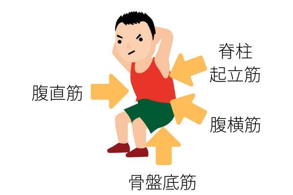胃下垂を改善する体幹