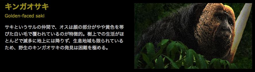 f:id:browncapuchin:20160616170627p:plain