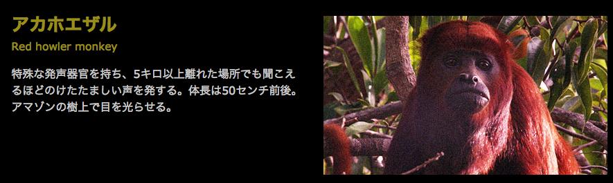 f:id:browncapuchin:20160616170747p:plain
