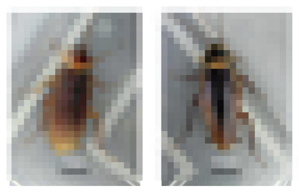 f:id:browncapuchin:20180507161815p:plain