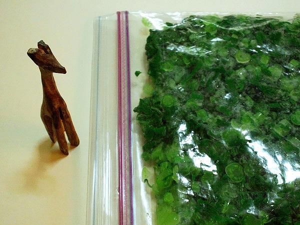 刻んで冷凍保存した大根の葉