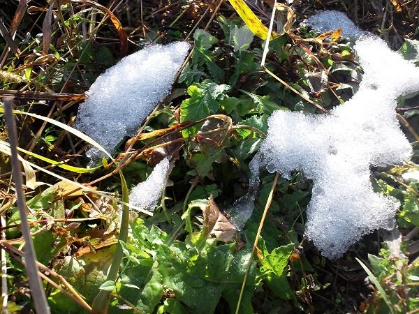 消えゆく雪とあたたかい日ざし