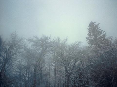 湯煙と雪景色