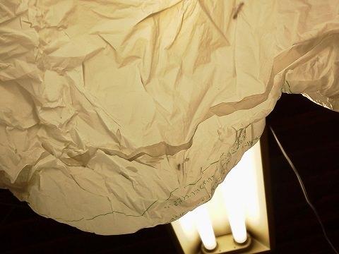 羽アリを駆除するために照明につけた袋