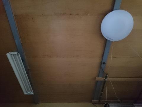 寝室の天井