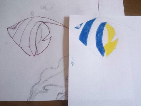 魚の絵に色鉛筆で色づけ