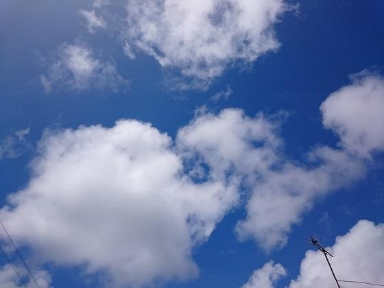 実家の庭で見上げた青空