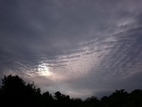 不思議な波状雲