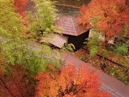 湯西川温泉 平家の庄の紅葉